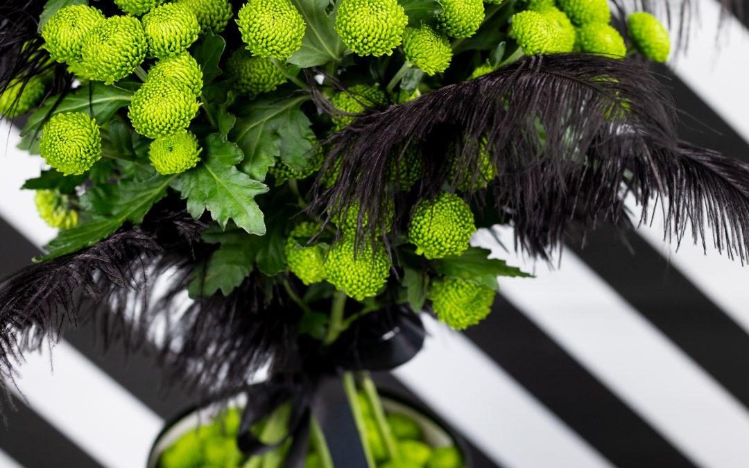 Deligreen, de nieuwe groene pompon Chrysant van Deliflor!