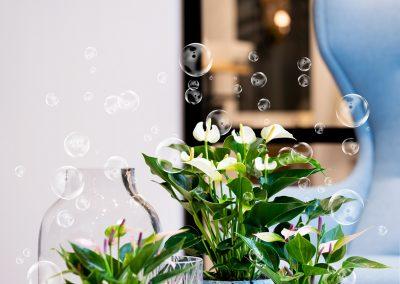 Breath en Bloom (fotografie Diyou)